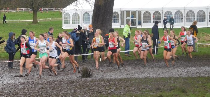 AFD Triumphant at National Cross Country
